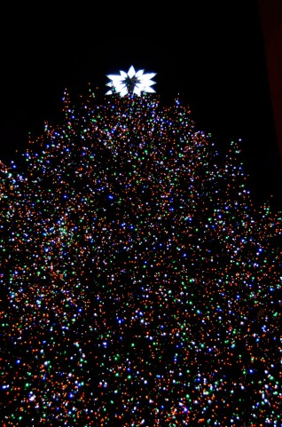 ニューヨークのクリスマスツリー