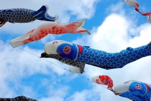 鯉のぼり 端午の節句